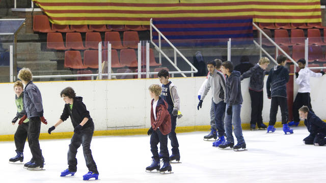 Picture of some children skating at a birthday party