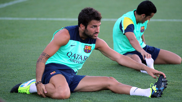 Cesc and Pedro training / PHOTO: ARXIU FCB