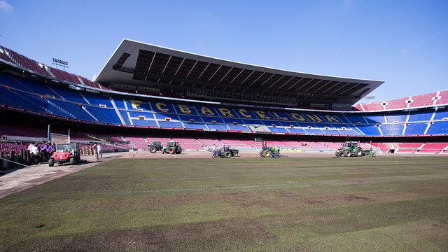 Turf relaying at the Camp Nou / PHOTO: GERMAN PARGA - FCB